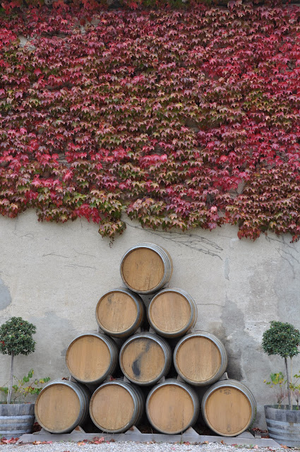 Autumn at the Domaine